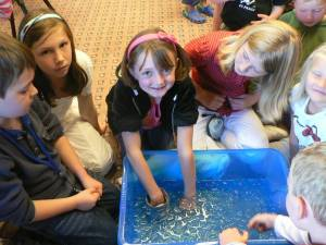 Soooo cold! Children try out the infamous 'Blubber Glove' on the MS Queen of Scandinavia