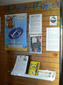 Info on the BFP in the ORCA Centre