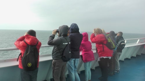 The children testing their wildlife ID skills out on the deck
