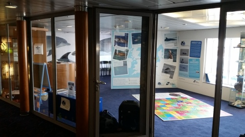 Looking through the windows of the new ORCA Wildlife Centre on board the DFDS King Seaways