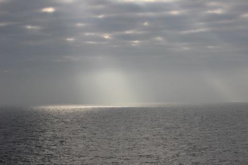 Fog&Sunshine
